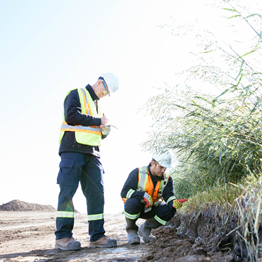 Two CER inspectors are making observations about soil management practices on a construction site. One is standing and taking notes. The other is kneeling down to look at soil and vegetation.